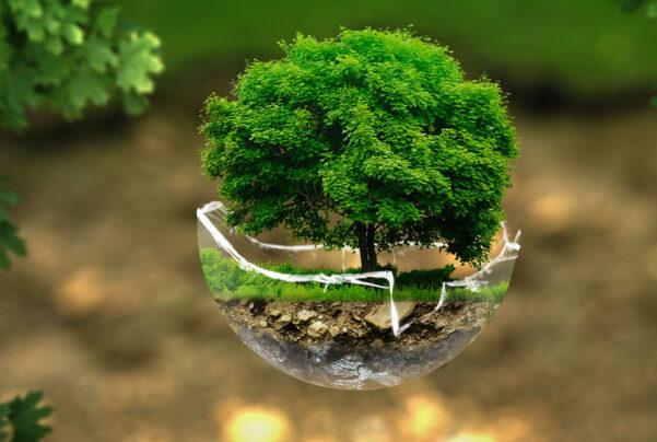 formation environnement et éco-conception